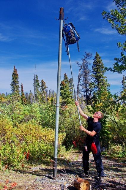 John demonstrating how to hang a bag so the bears can't get it - Kluane National Park