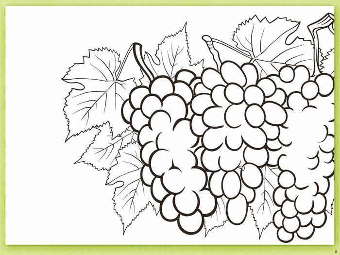 Как сделать овощи и фрукты из бумаги | Фрукты, Раскраски ...