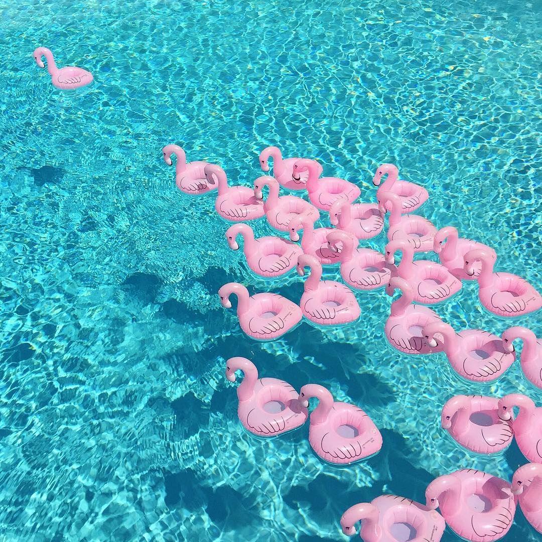 PINK FLAMINGO FLOATING DRINK HOLDERS Summer of love