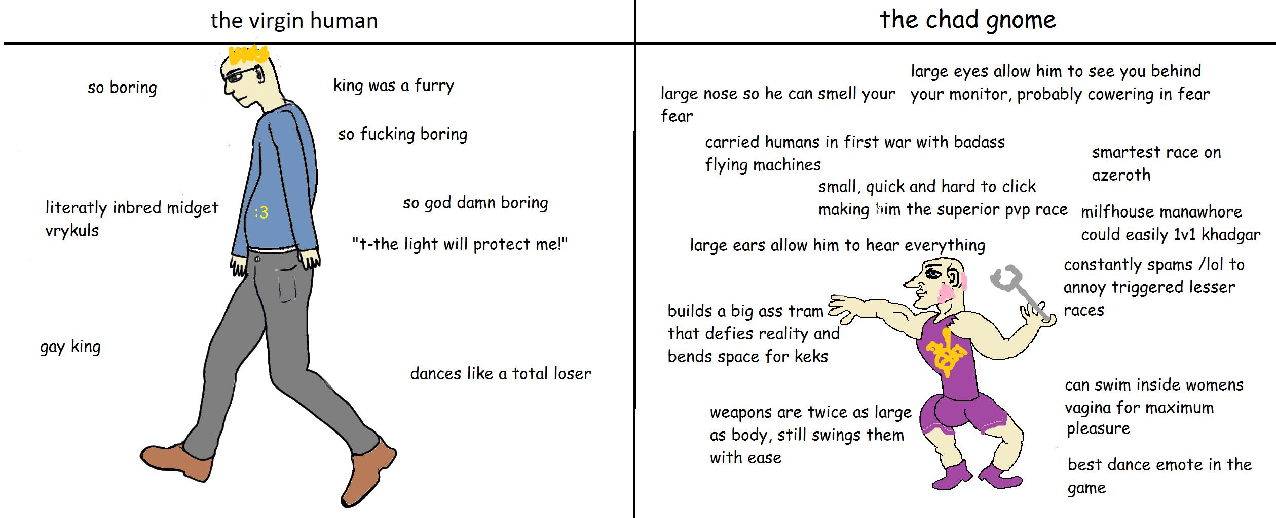 The virgin human vs chad gnome worldofwarcraft blizzard