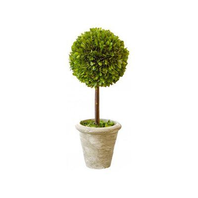 "Mills Floral Box Single Topiary in Pot (Set of 2) Size: 12"" H"