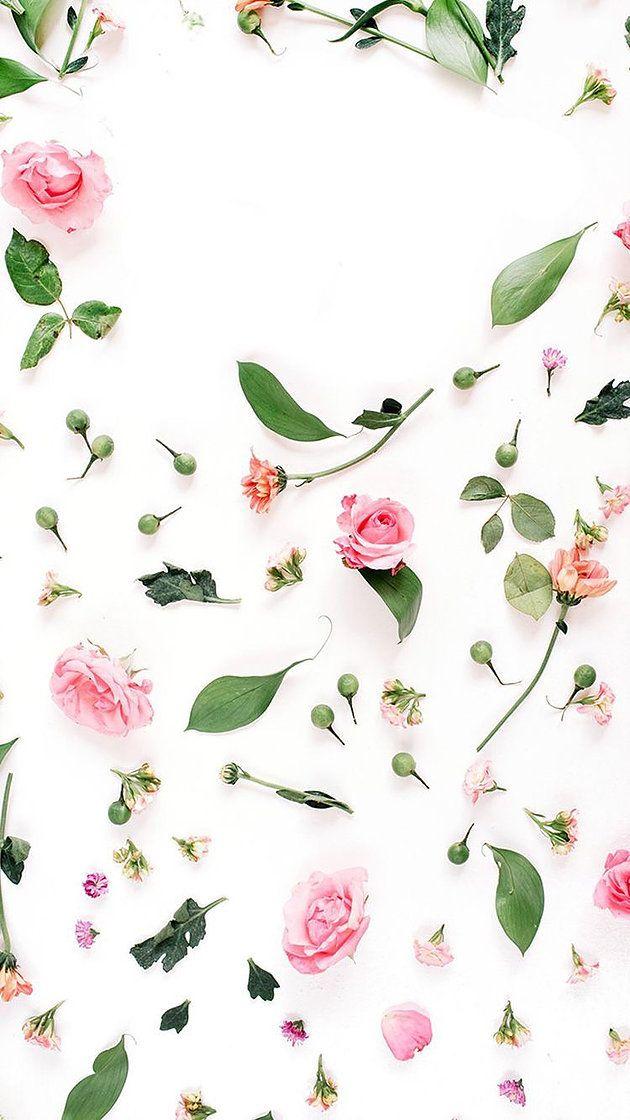 Voici Une Selection De 30 Fonds Ecran Canons Pour Vos Telephones Let 39 S Go Iphone Wallpaper Iphone Wallpaper Pattern Flower Wallpaper Coolest wallpaper flower and