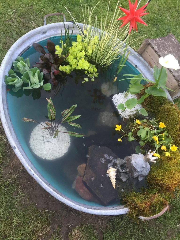 Mini-Aufwand für den Mini-Teich