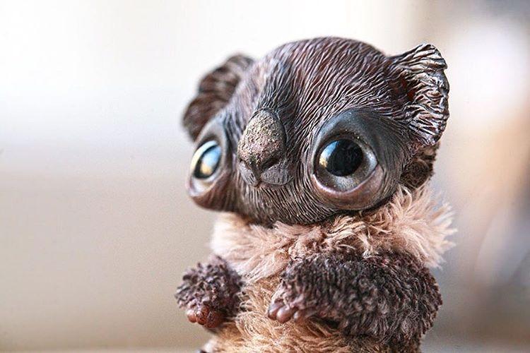 🐨🎉#handmade #arttoy #artdoll #koala #koalabear