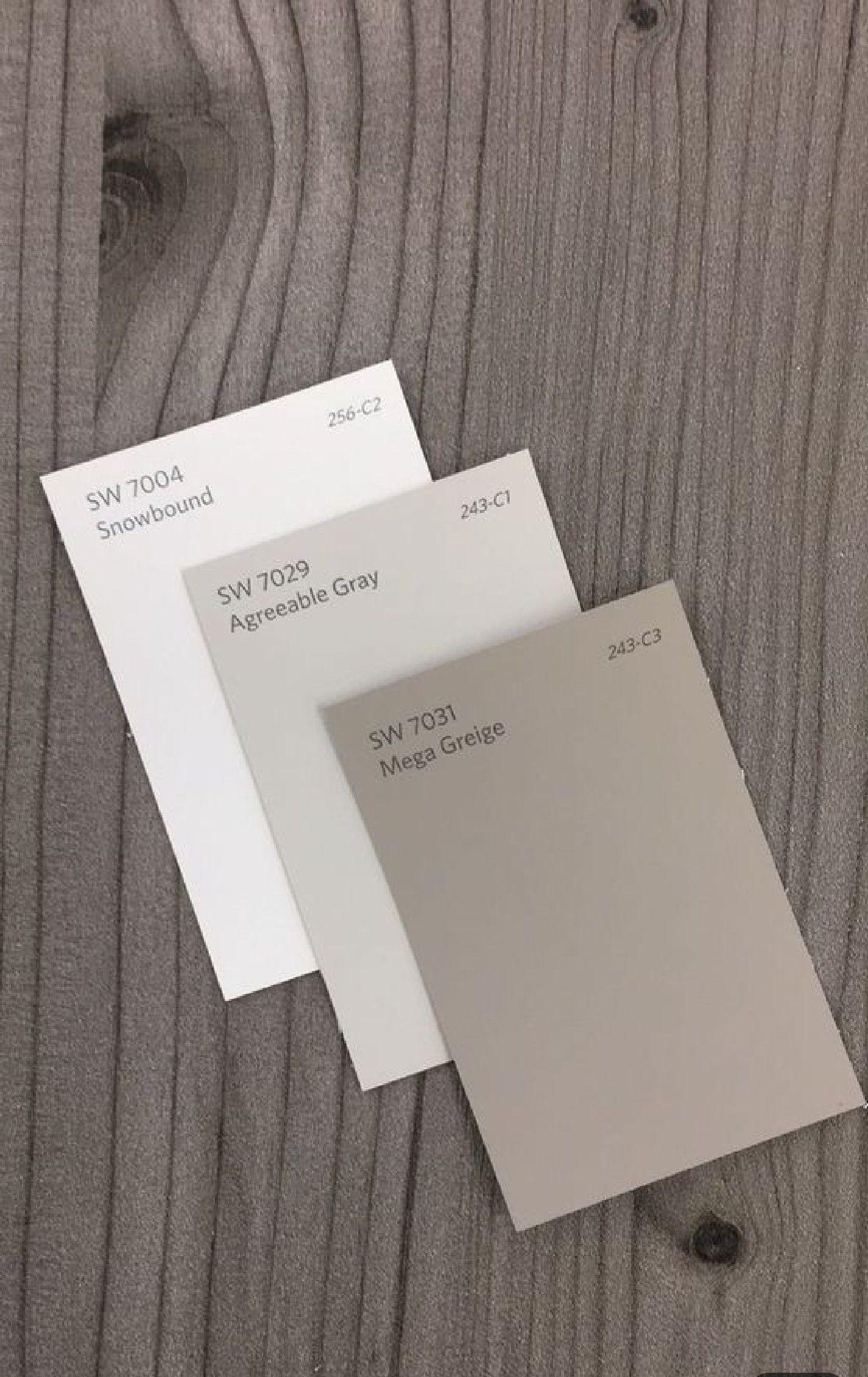 3 greys color palette