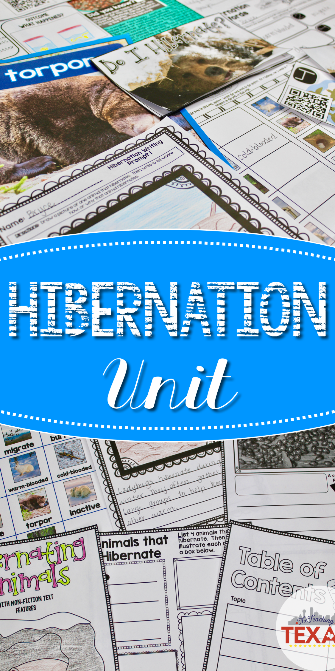 Hibernation A Non Fiction Reading Science And Writing