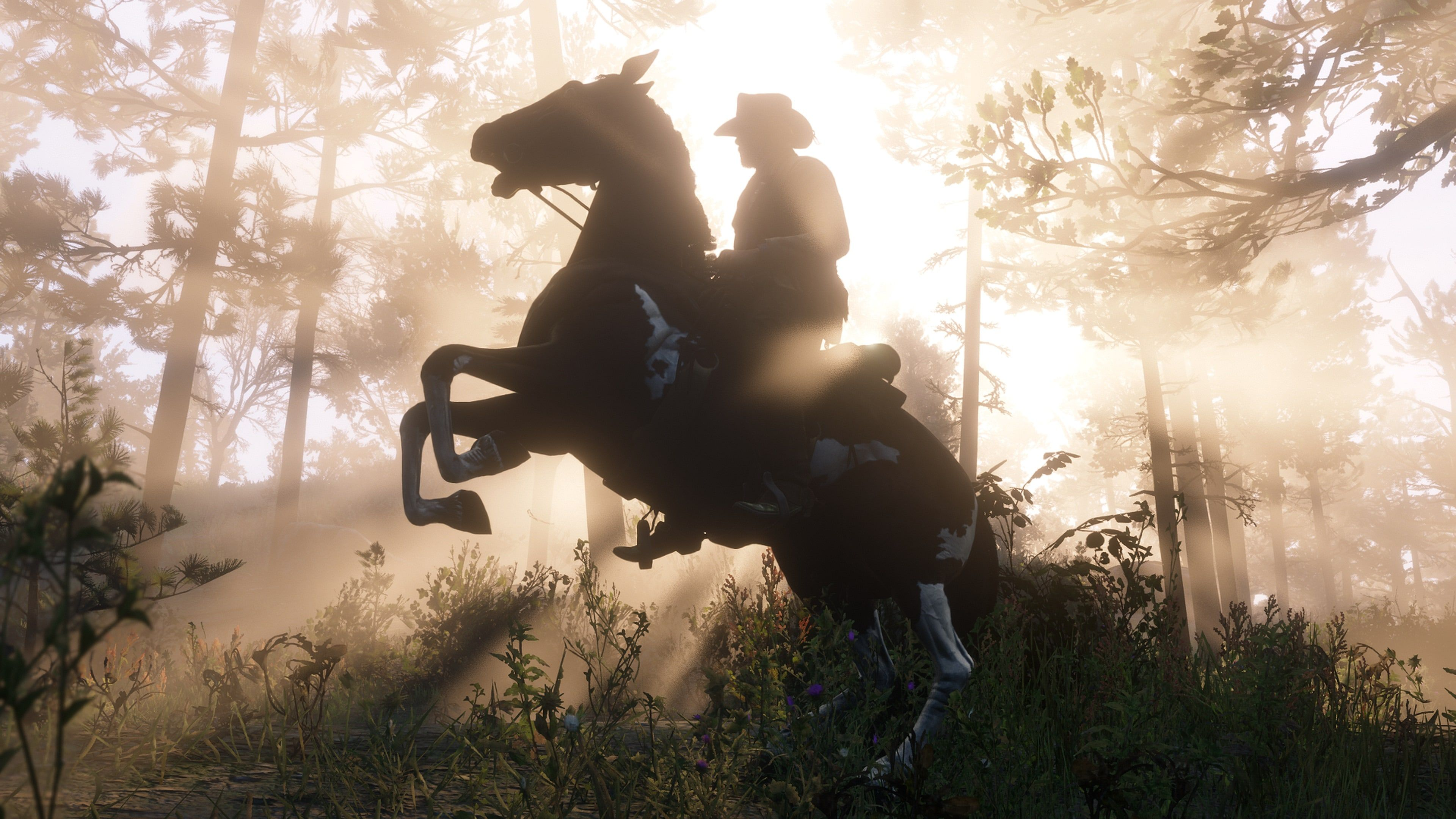 Heres How to Get the Best Horse in Red Dead Redemption 2