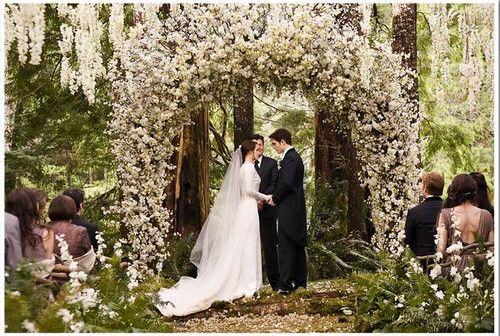 The Twilight Saga Breaking Dawn Part 1 Photo The Wedding Twilight Wedding Breaking Dawn Wedding Twilight Wedding Scene