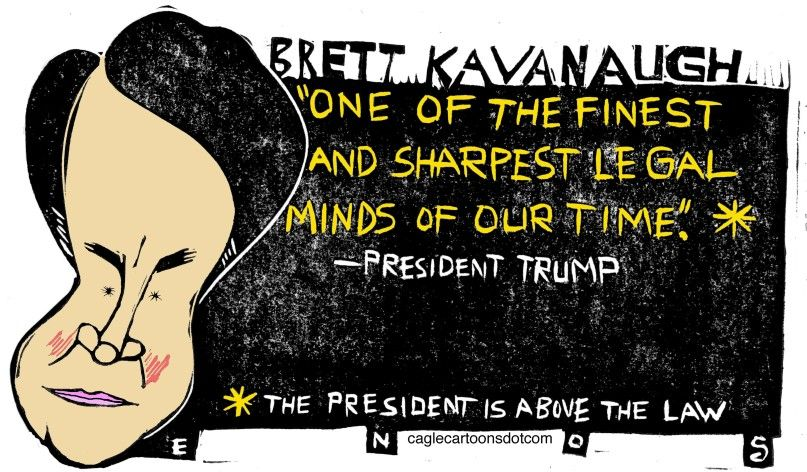 Image result for cartoons kavanaugh