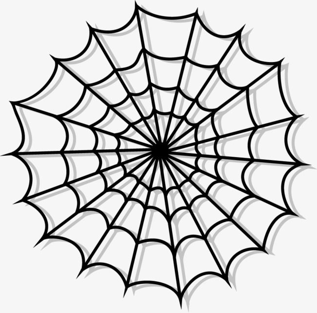 Vector Spider Web Illustration Web Tattoo Spider Web Spider Web Tattoo