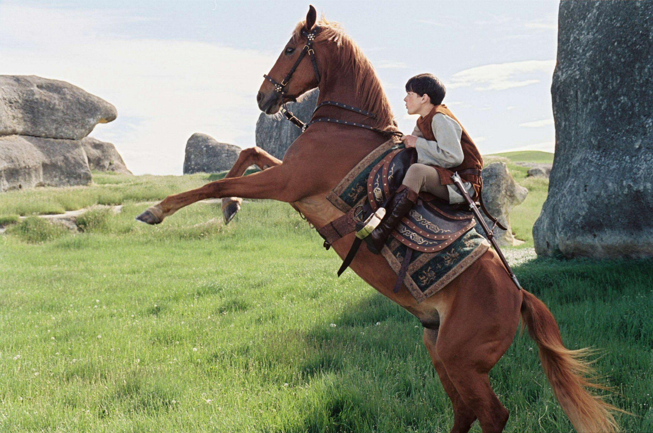 Whooooa horsie!\