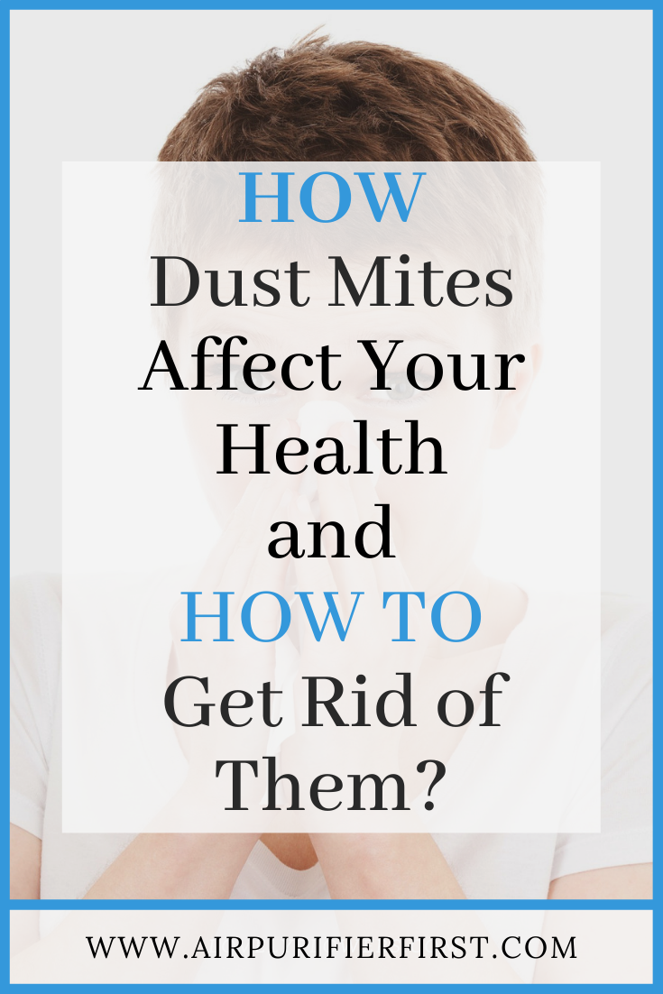 How Dust Mites Affect Your Health And How To Get Rid Of Them Dust Mites Dust Mite Allergy Allergy Treatment