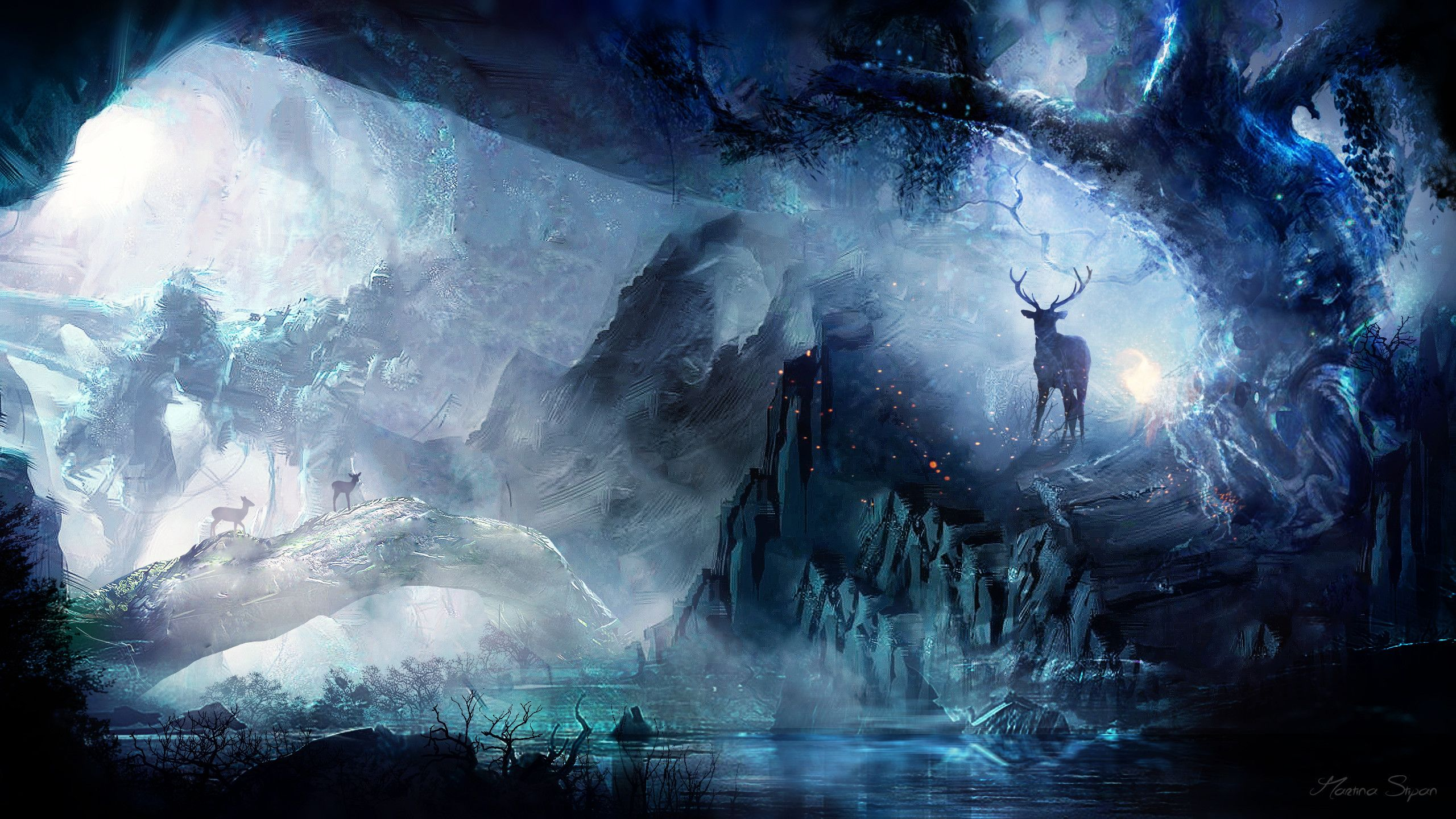 2560x1440 Fantasy Forest Wallpaper Fantasy Concept Art Art Animation Art