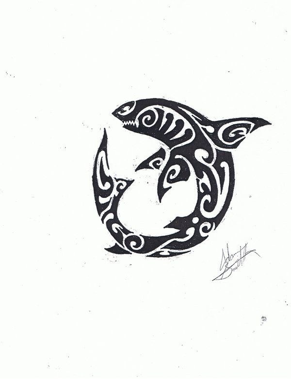 traditional polynesian shark art google search sup