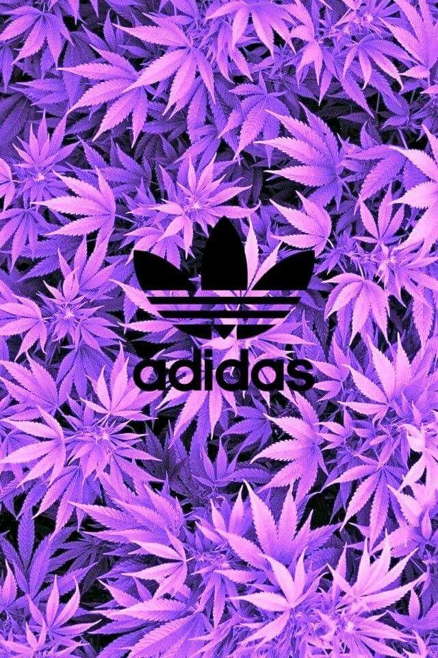 Adidas Wallpaper Weed Larmoriccom