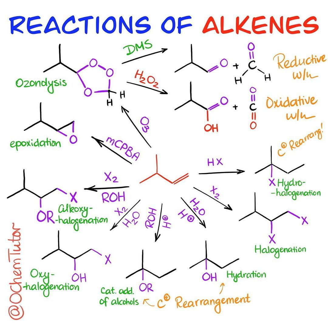 "Photo of Victor, the OChem Tutor on Instagram: ""Before we go into a bunch of #reactions of #alkenes and their details, I wanna give you a brief overview of the typical reactions that…"""