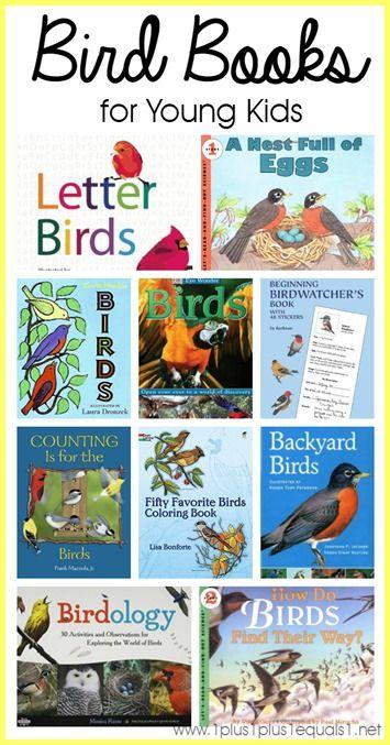 Bird Books For Young Children Bird Theme Pinterest Birds
