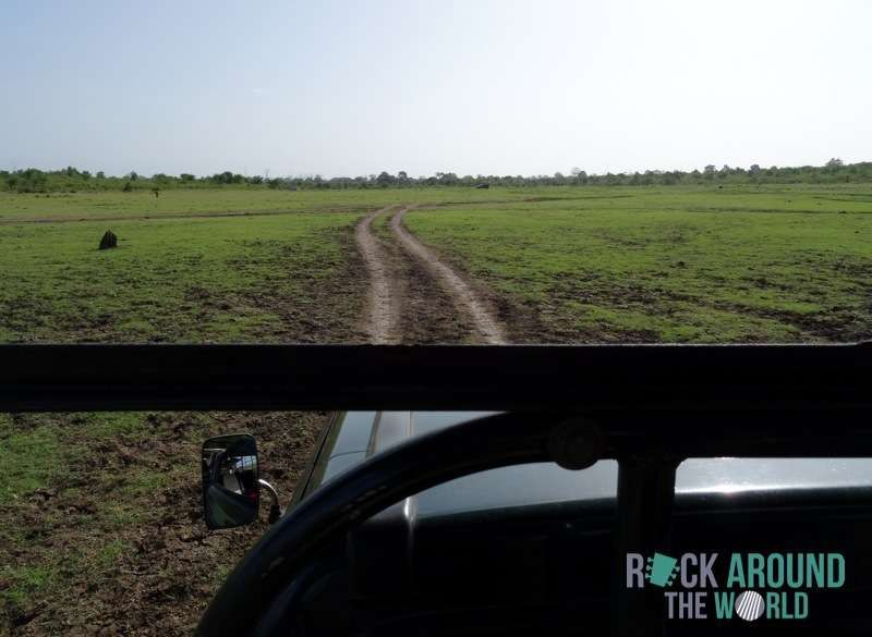 Safari Tour mit dem Jeep durch den Udawalawe National Park, Sri Lanka