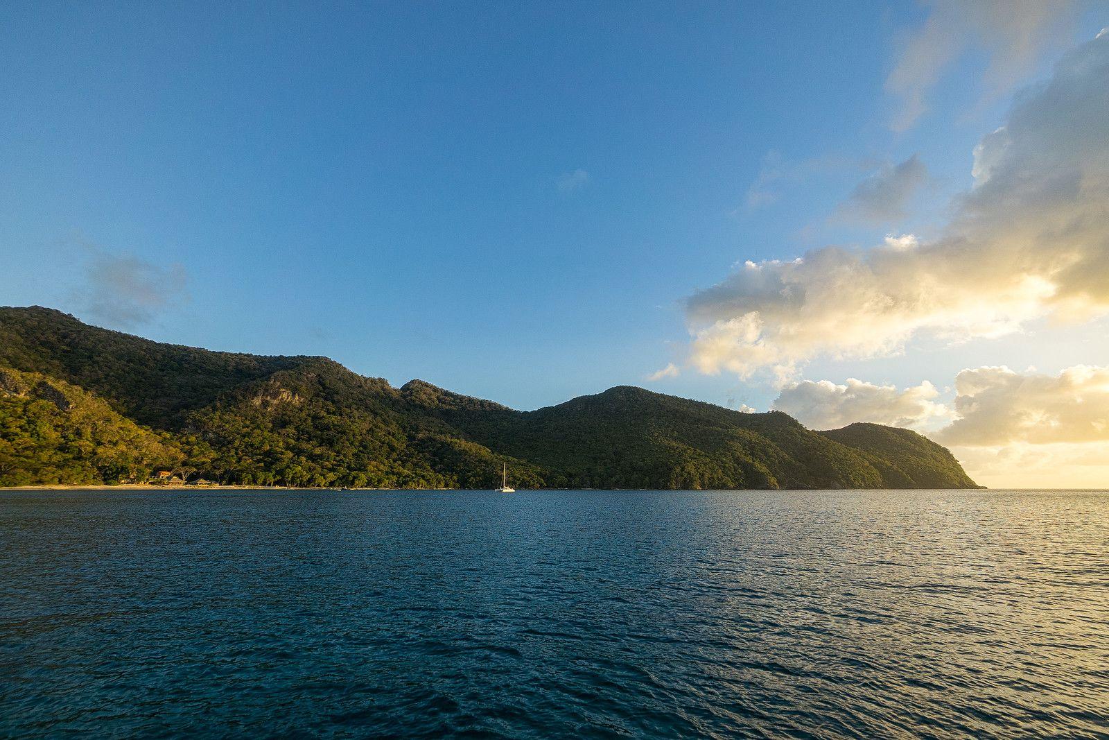 Union Island | Grenadines, St vincent grenadines, Palm island