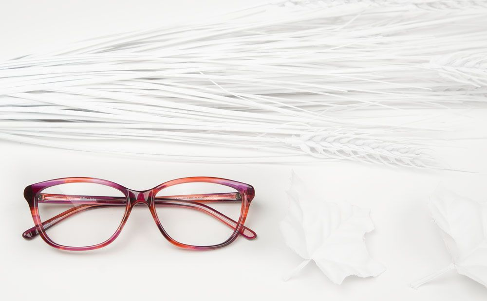 A modern cat eye in marsala tortoise = a pair of glasses right on trend | The Rose | felix + iris