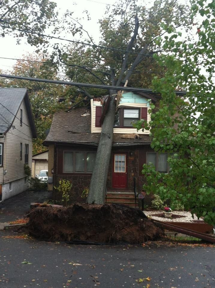This unlucky house was crushed by a tree hurricane sandy pinterest hurricane sandy Unlucky house
