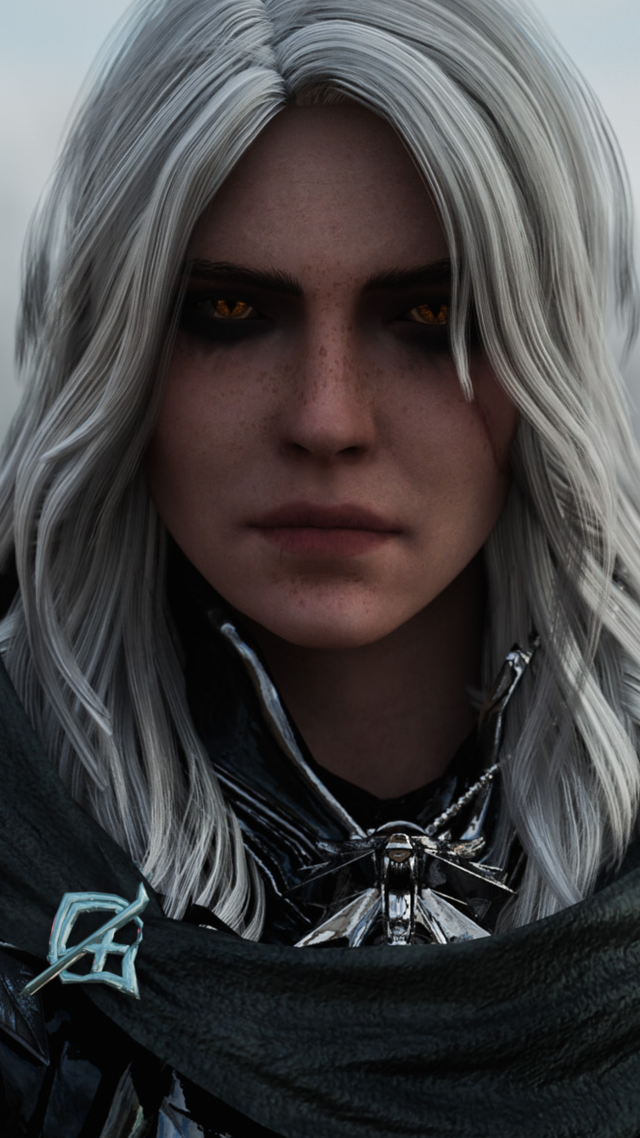 Cirilla Witcher The Witcher The Witcher Game The Witcher Books
