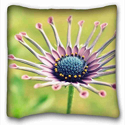 Custom Cotton  Polyester Soft Nature Custom Cotton  Polyester Soft Rectangle Pillow Case Cover 16x16 inches One Side suitable for Fullbed -- You can get additional details at the image link.