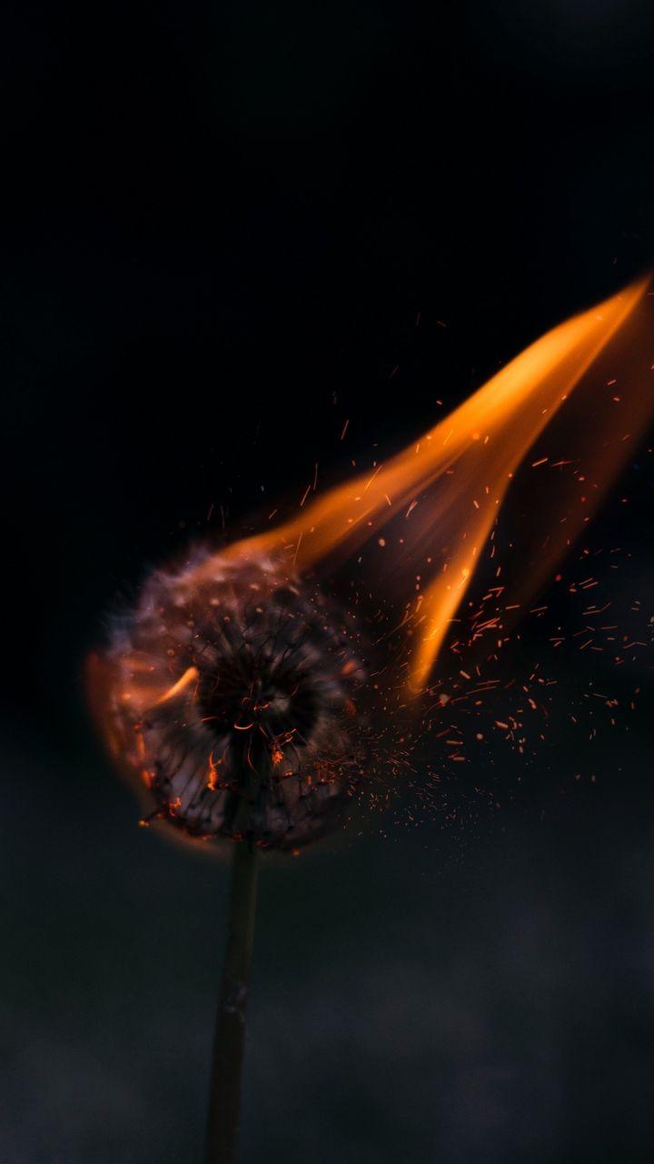 Скачать 720x1280 одуванчик, огонь, искры обои, картинки ...