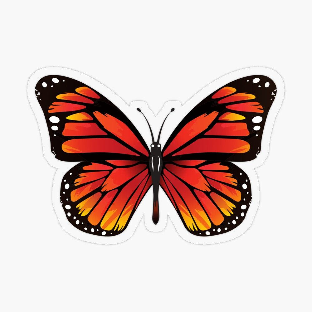 'Orange black butterfly' Transparent Sticker by GloriannaCenter