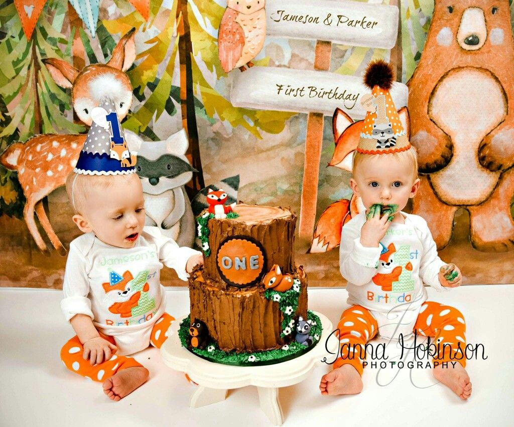 Twins One Year Cake Smash Woodland Forest Cake Smash