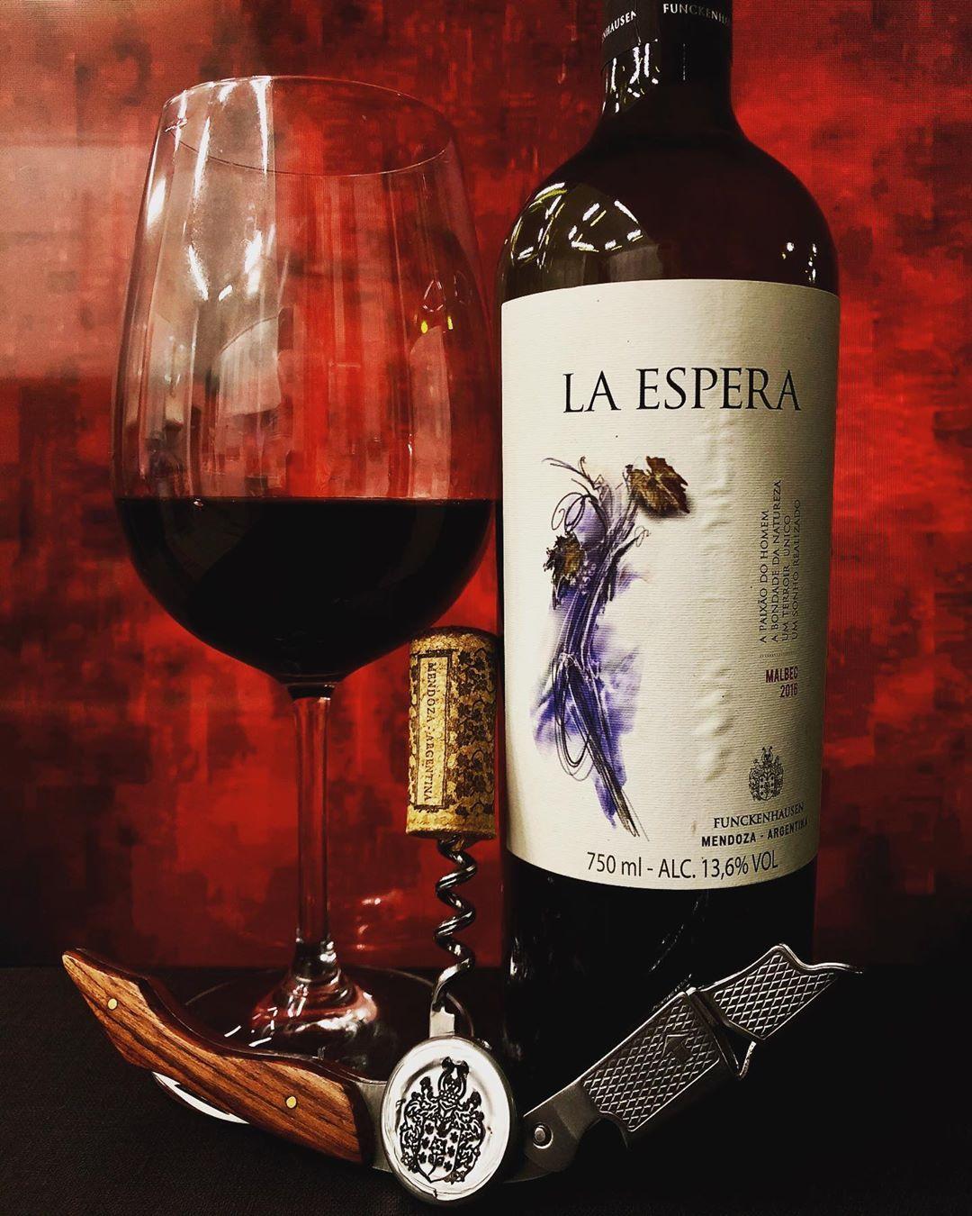 Photo By Mi Taraborelli Brasil La Espera Malbec 2016 Alc 13 6 Alc San Rafael Mendoza Argentina Degustado E Red Wine Alcoholic Drinks Mendoza