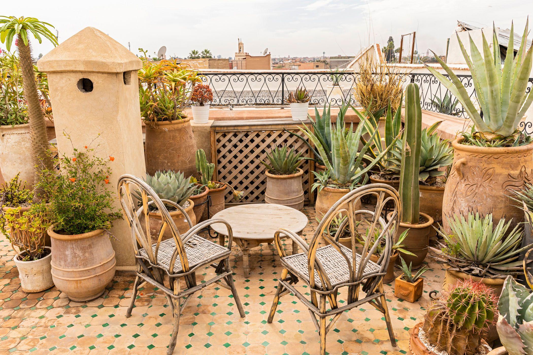 Riad Yasmine Die Perfekte Urban Jungle Oase In Marrakesch Das Onlinemagazin Fur Fempower Homestories Kleiner Hof Garten Marrakesch Riad