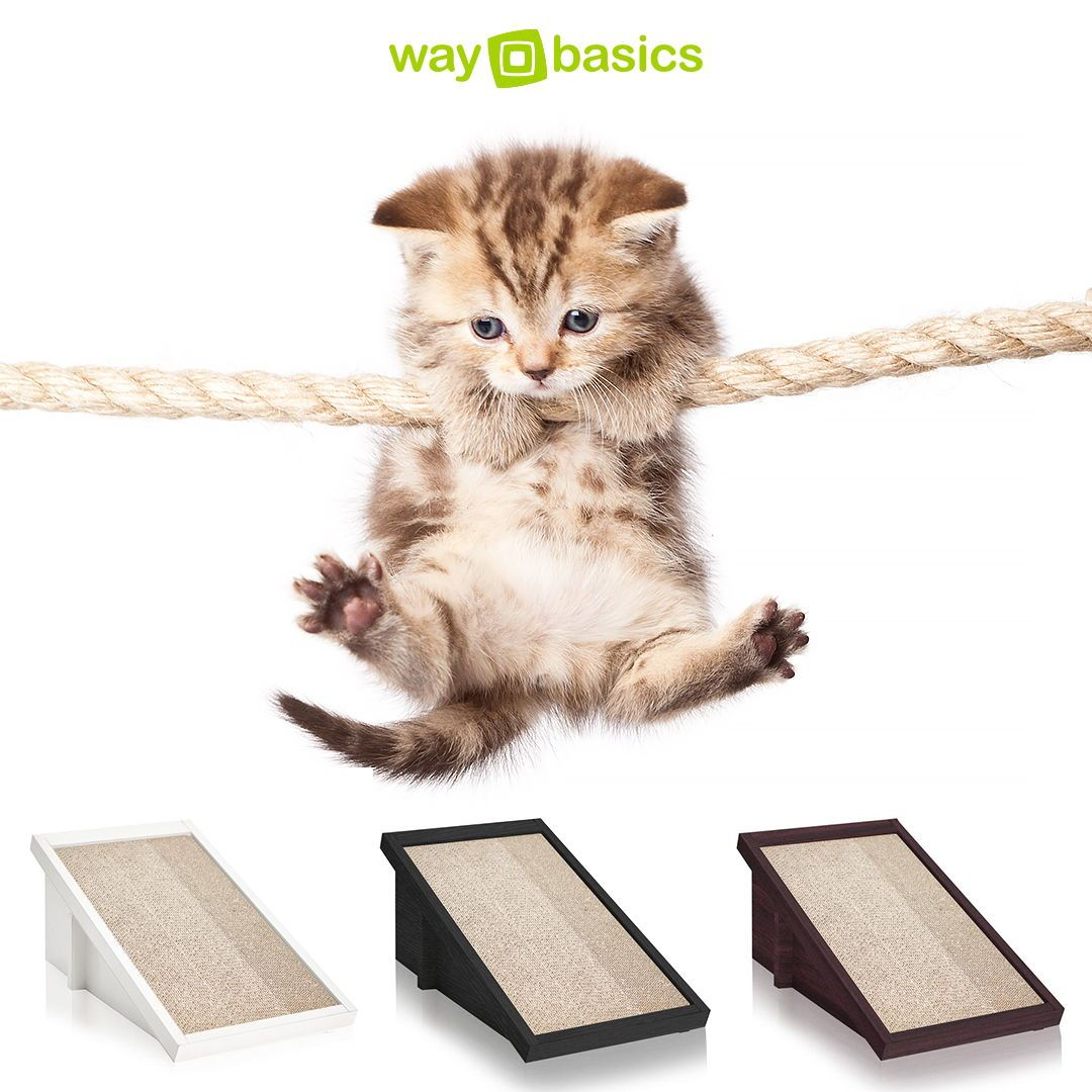 Check Out Our Cat Scratchers And Many More At This Year S Catcon On August 4 5th 2018 At The Pasadena Convention Center Litter Box Cube Storage Cat Scratchers
