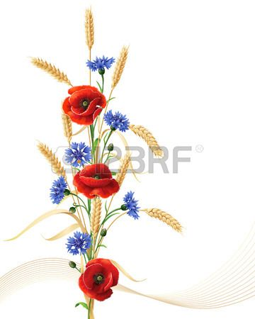 Bunch Of Wheat Ears Red Poppy Flowers And Blue Cornflowers Isolated On White Flower Drawing Red Poppy Tattoo Poppy Flower
