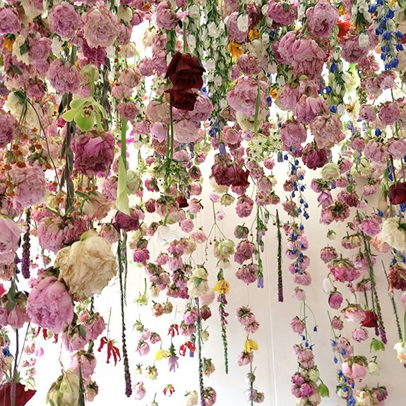 MUSE | BLOOM Rebecca Louise Law
