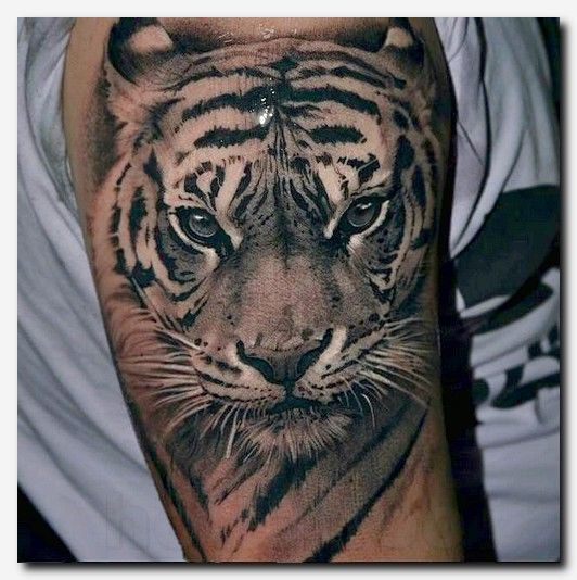 115 Beautiful Quotes Tattoo Designs To Ink: 25+ Best Ideas About Tiger Tatto On Pinterest