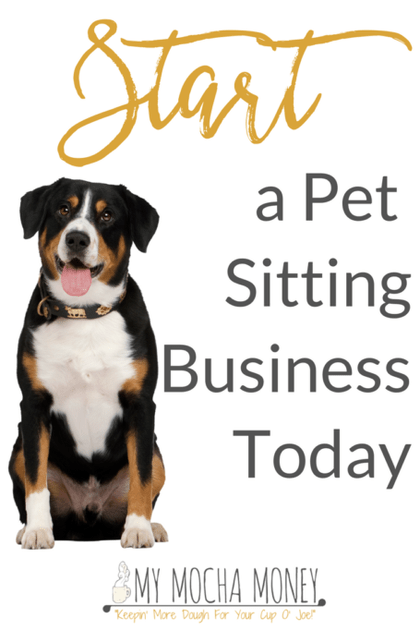 You Can Start A Pet Sitting Business
