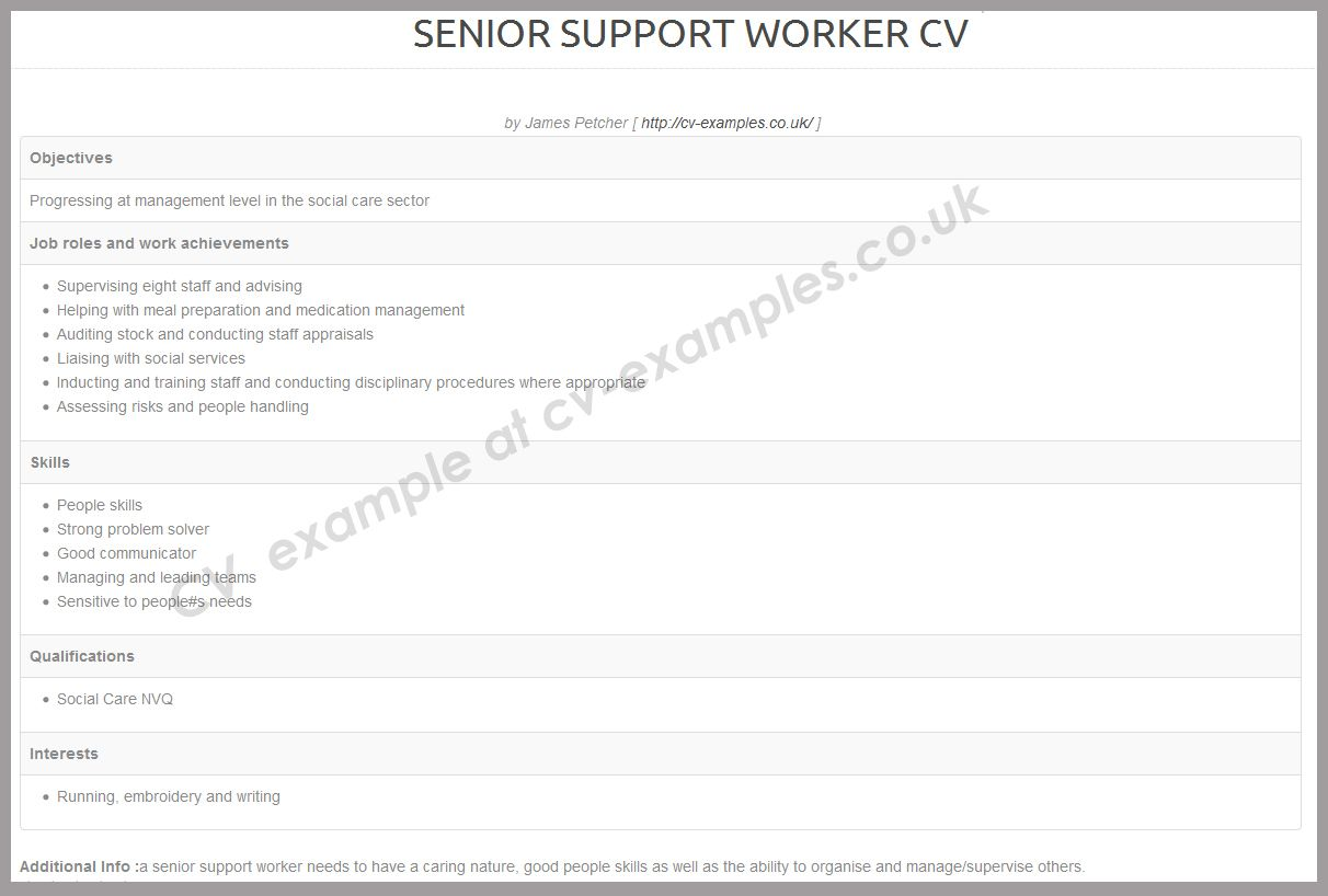cv example of a senior support worker