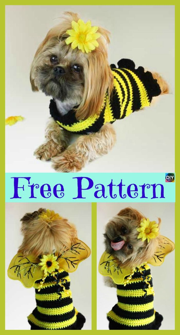 Bumble Bee Crochet Dog Sweater - Free Pattern | crochet | Pinterest ...