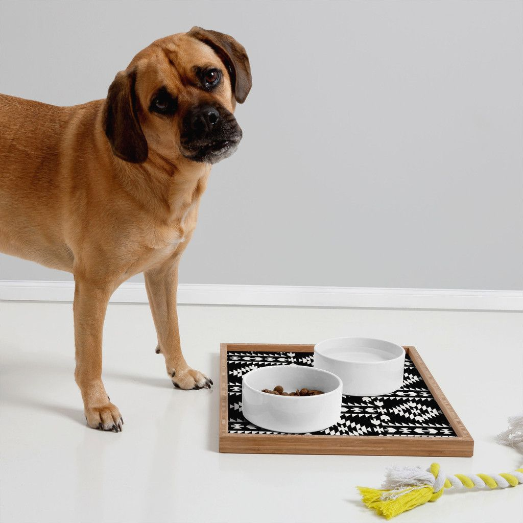 modern dog bowls and trays from deny designs  dog swagg  - modern dog bowls and trays from deny designs
