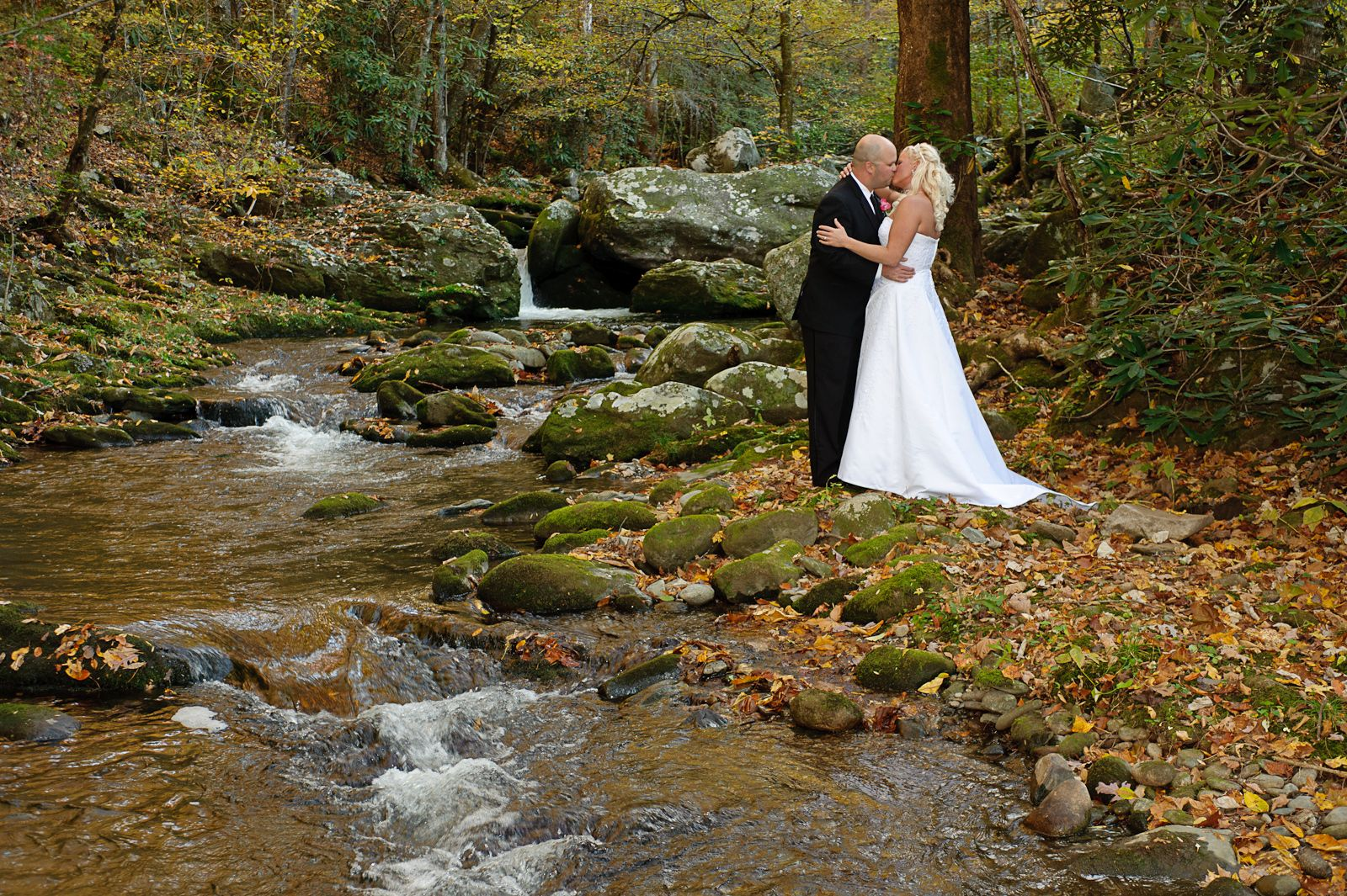 Weddings Photography Gatlinburg Tn Perfectweddingpics Com In 2020 Gatlinburg Weddings Smoky Mountain Wedding Mountain View Weddings