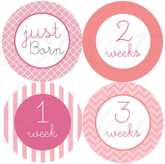 This listing includes four 4 stickers, designed by Sweet Seraphina herself. A perfect add-on to the 12 month pack!    The 4 stickers you will