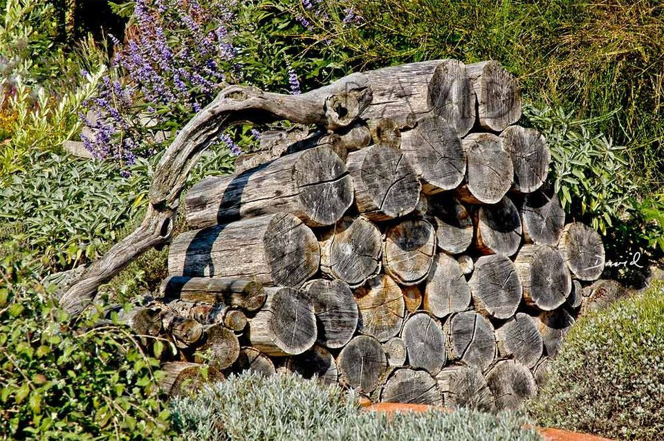 Totholz Holzstapel Holzstoss Holzstoss Naturgarten Wildlife Garden Wood Pile Log Pile Naturgarten Naturnaher Garten Permakulturgarten