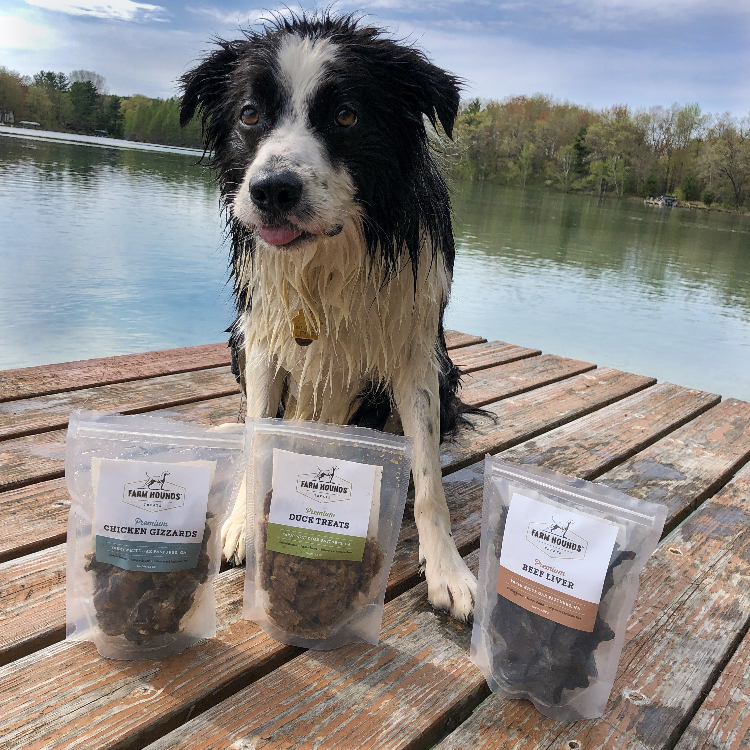 Farm Hounds Jerky Treat Review Hound Dog Treats Dog Lovers