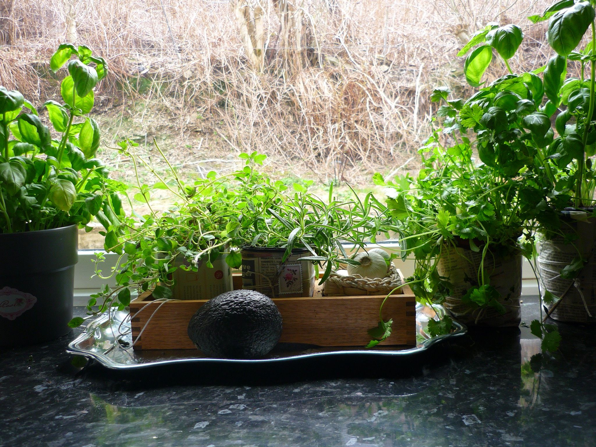 cut a clean milk carton,cover with newspaper and some neat decor; and voila! Cute herb pot!
