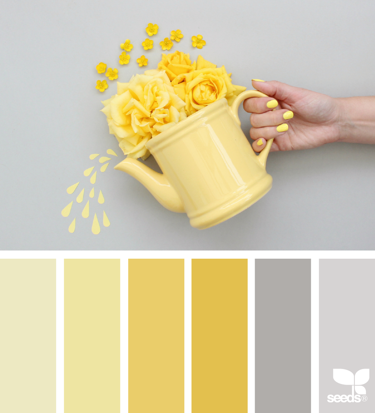 Color Create Color Palette Yellow Color Schemes Colour Palettes