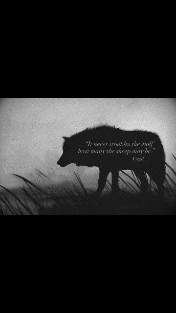 Wolf Quotes》Virgil | Hour of the Wolf | Wolf quotes, Badass
