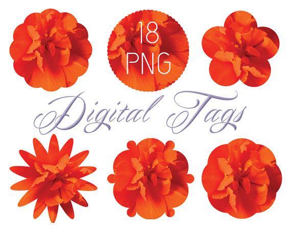 Digital Quot Photo Tag Quot Flower Tag Clip Art Orange Yellow Labels Clipart Frame Border Png Transparent Background Inst Clip Art Digital Photo Art