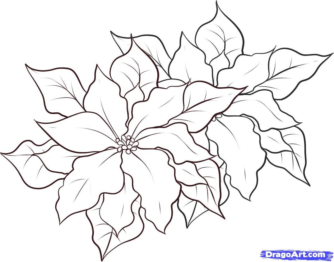 It is a picture of Bright christmas flowers coloring pages