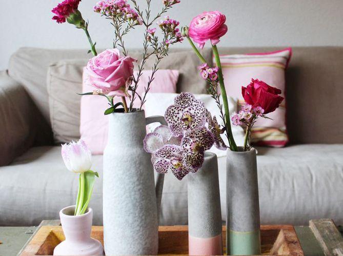 Fleurs Rose Interieur Plantes Plantes D Interieur House Plant